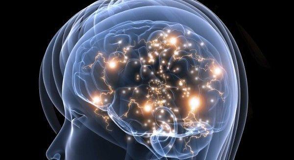 El cerebro: un procesador que en algunos aspectos deja mucho que desear