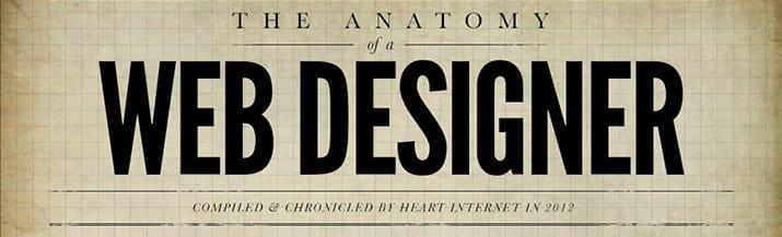 Perfil del diseñador web (infografía)