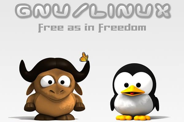 Tipos de licencia libre I: open source