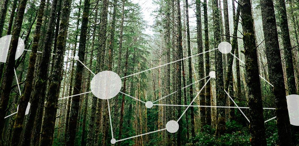 Tecnología relajada y computación ubicua, ejes del futuro tecnológico