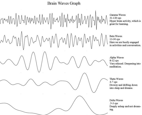 brainwave graph