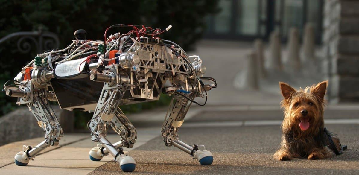Planteando un escenario cohabitado entre humanos y robots