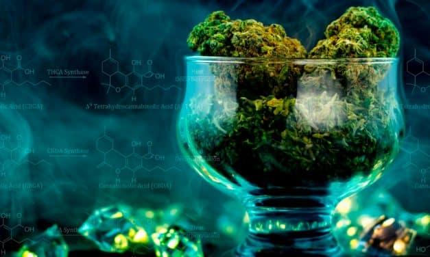 CBD en el mercado global: El negocio mundial de los cannabinoides