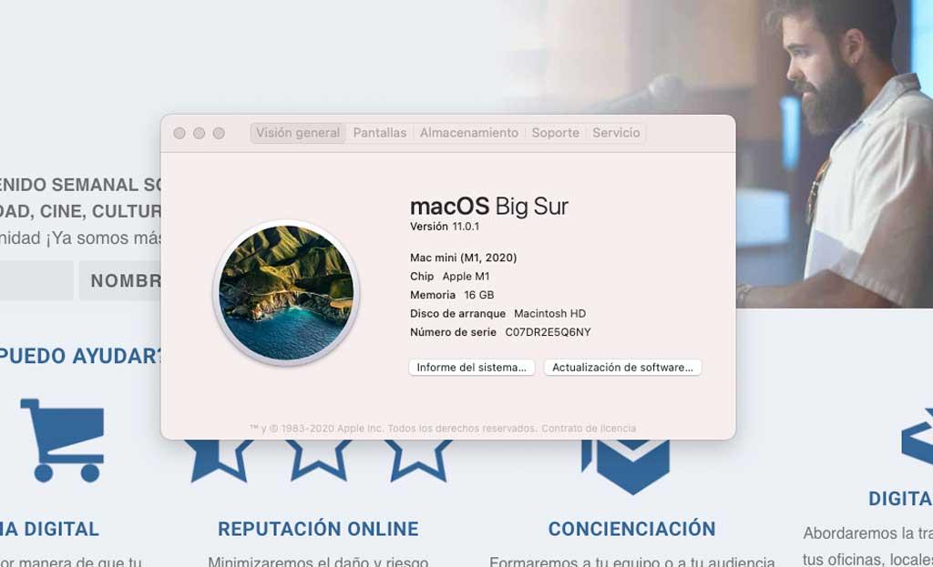 detalle apple silicon mac mini